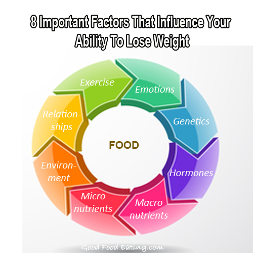 Food pyramid weight loss plan image 7