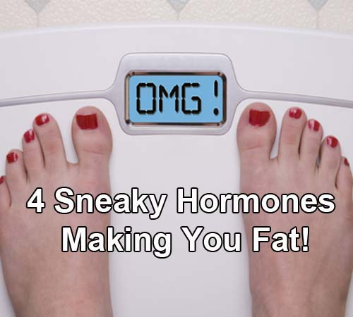 4 sneaky hormones making you fat