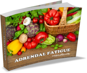 Adrenal Fatigue Handbook