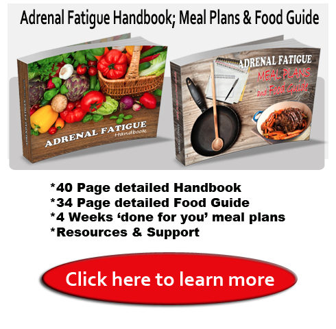Adrenal Fatigue Handbook meal plans