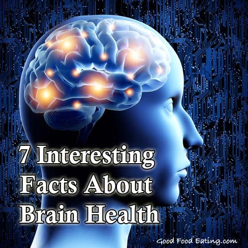 7 Interesting Facts About Brain Health