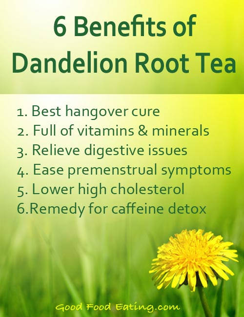 Drinking Dandelion Tea Health Benefits