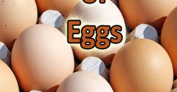 GFE Podcast #36: Health Benefits of Eggs