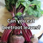 Can you eat beetroot leaves?