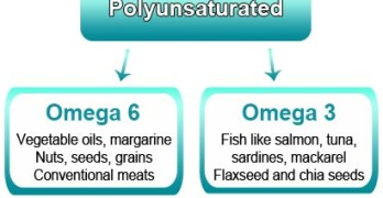 Omega 3 vs Omega 6 Fatty Acids