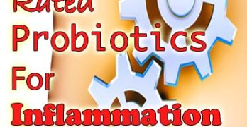 TOP 2 Best Rated Probiotics For Inflammation & Health