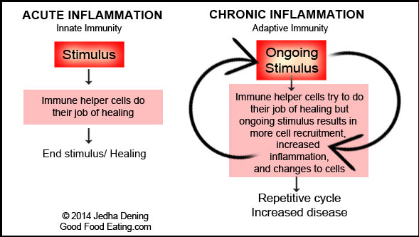 acute-and-chronic-inflammation